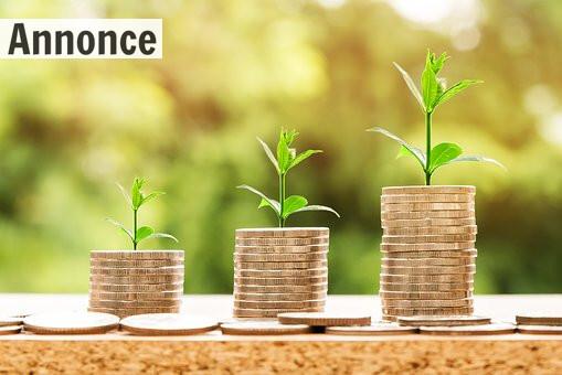 4 måder at skaffe kapital til din virksomhed på